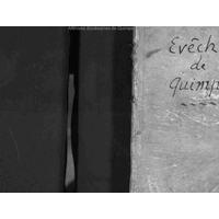 Constitutiones synodales illustrissimi ac reverendissimi D. D. Renati de Rieux : episcopi Leonensis promulgatae paulipoli in Leoniâ annis 1629 & 1630
