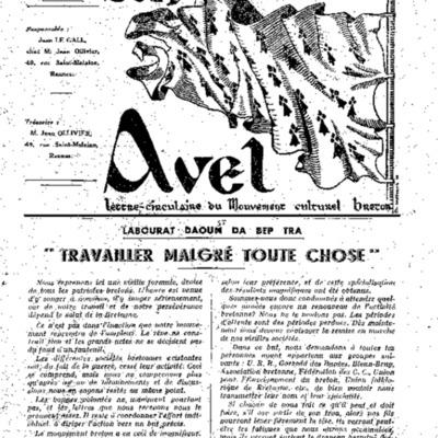 AnAvel.pdf